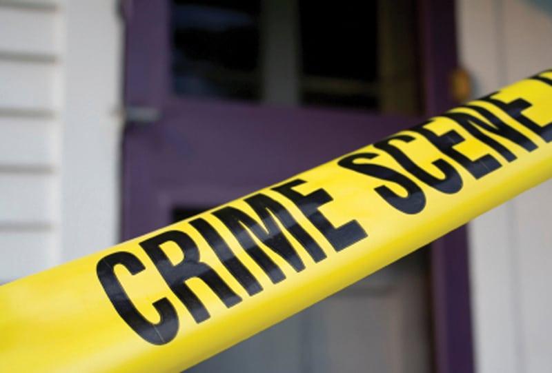 The Veterinarian as Crime Scene Investigator