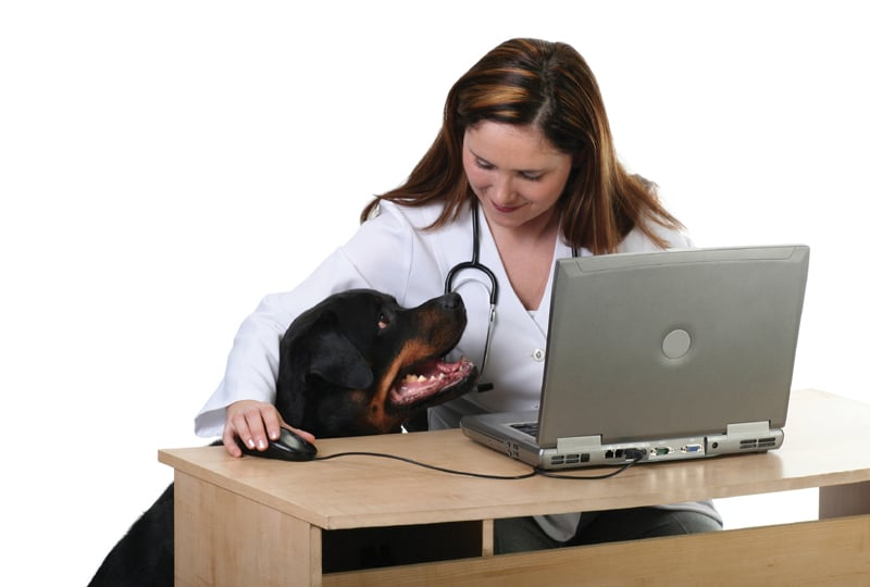 siti di incontri online per professionisti medici
