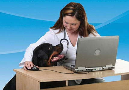 Practice BuildingVeterinary Practice Software & Technology - Part 1