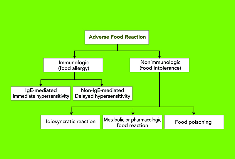 Nutritional Management of Chronic Enteropathies in Dogs