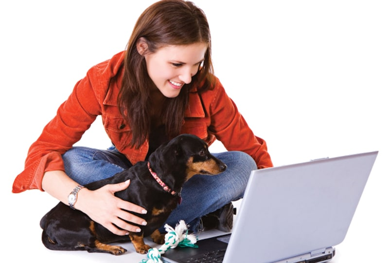 How Veterinary Practices Can Thrive in an Online Environment