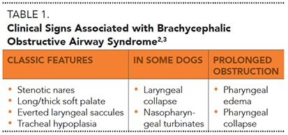 2015_0506_Breed Respiratory_Table1