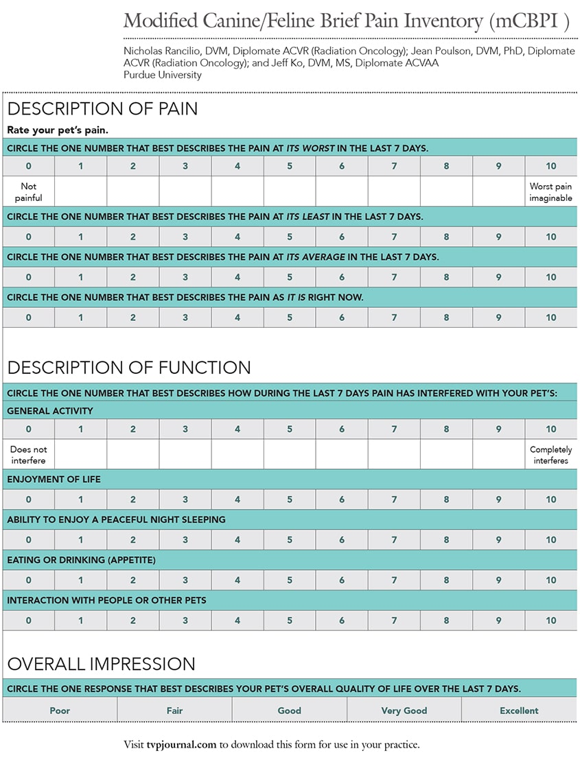 2015_0506_EO_Cancer Pain_Handout1