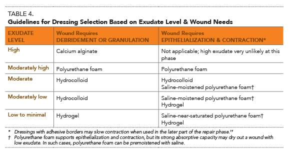 Moist Wound Healing: The New Standard | Today's Veterinary