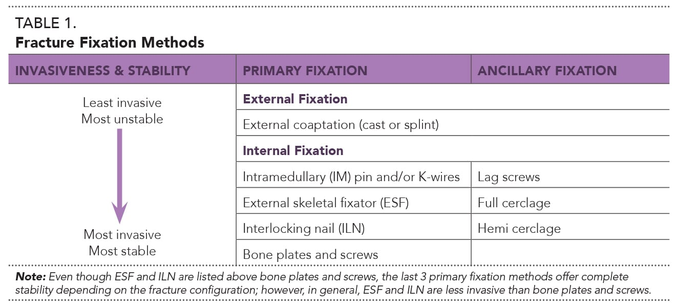 A Practitioner's Guide to Fracture Management, Part 3