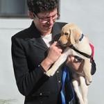 Dr-Otto-Puppy-Hug-210x300