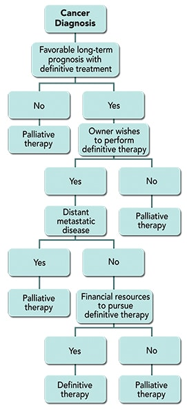 FIGURE 1. Goal-oriented cancer treatment decision-making tree.