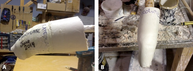 FIGURE 2. The stifle casting is poured with plaster of Paris (A) to create a positive model of the affected limb (B). Photo courtesy Jeff Collins