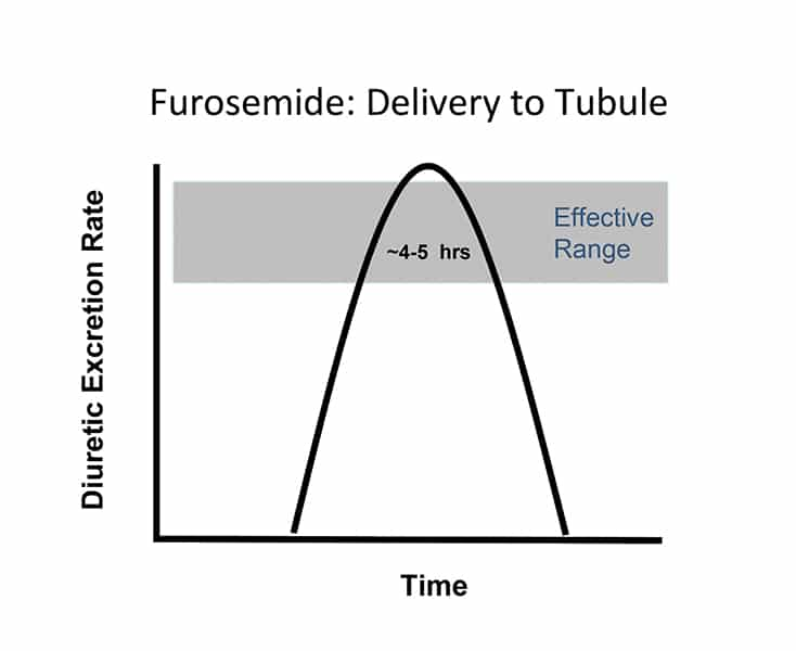 Practical Techniques from the NAVC InstituteBeyond Furosemide: The