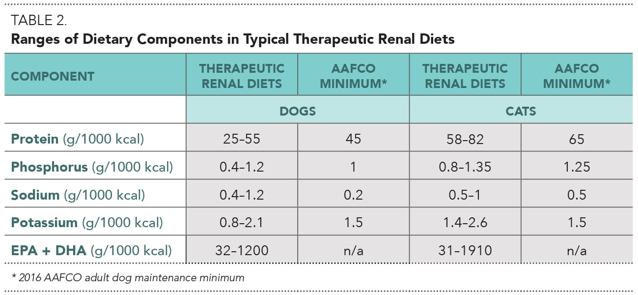 Nutritional Management Of Chronic Kidney Disease In Cats Dogs Today S Veterinary Practice