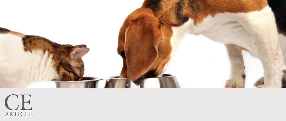 Role of Dietary Fatty Acids in Dogs & Cats