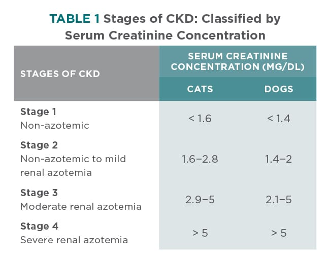 Treatment Guidelines For Chronic Kidney Disease In Dogs Cats