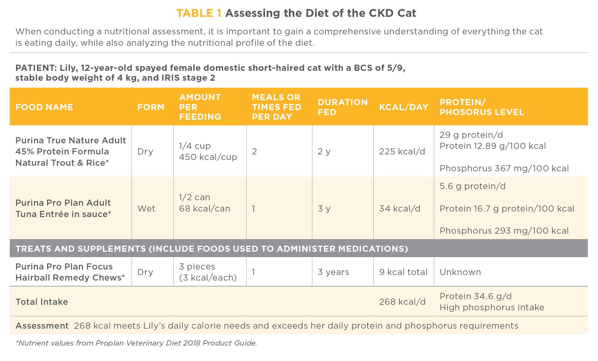Feeding Cats With Chronic Kidney Disease: Customizing the