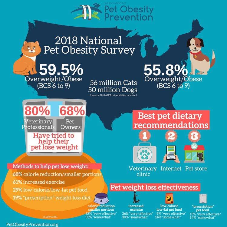 APOP pet obesity survey