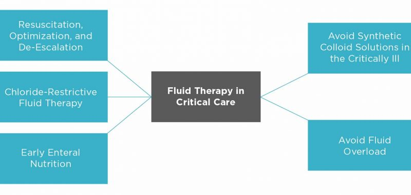 Figure 1. New trends of fluid therapy in veterinary emergency and critical care.