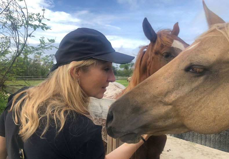 Vets helps horses in Bahamas
