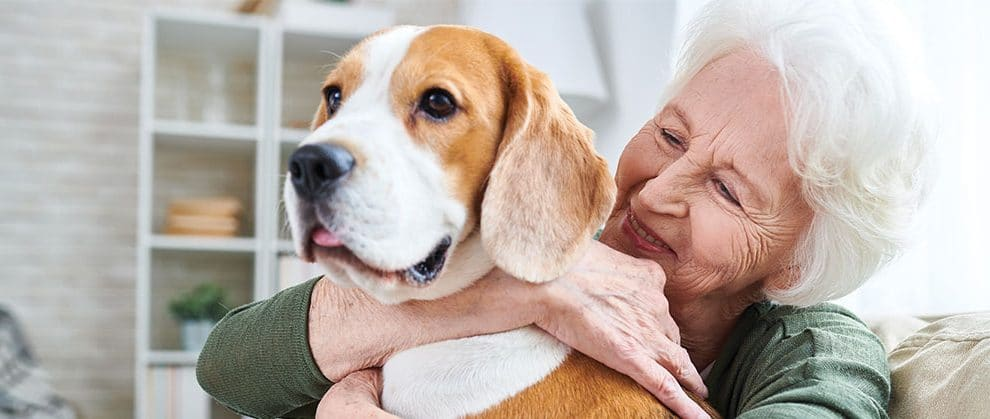 Loneliness, Pets, and the Role of Vets