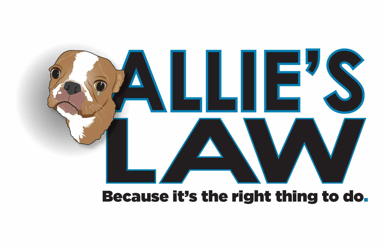 florida abuse pets law