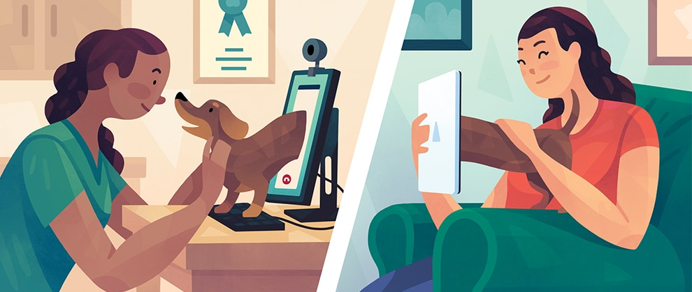 Telehealth: Navigating the New Normal