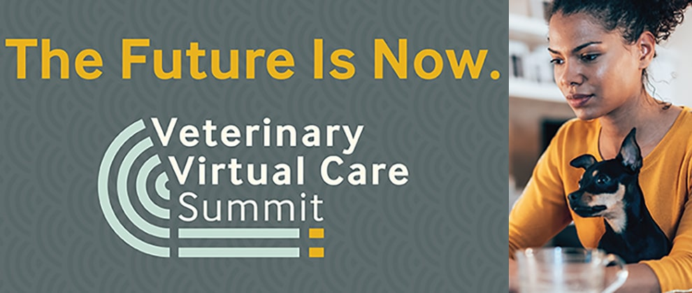 Veterinary Virtual Care Summit Offers Free CE and Telemedicine Training