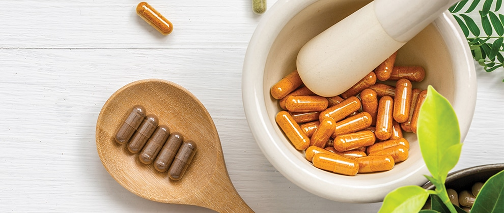 Supplements for Small Animal Cancer Patients
